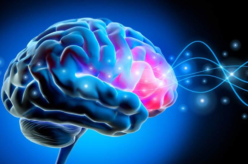 klangtage, gehirnwellen, gehirn, neuro science, neurologie